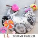 小樂寵 木天寥+貓草毛絨卡通造型玩具 現+預