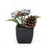聖誕經典銀色小盆花10.5cm
