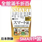 日本 SVELTY SMART菌 乳酸菌 聰明菌 EC12【小福部屋】