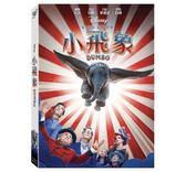 小飛象 2019版 DVD (購潮8) 得利   4710756317944