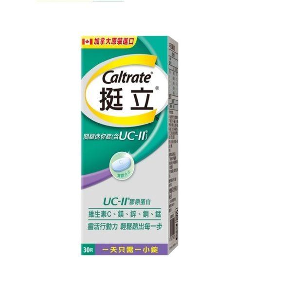 【挺立】UC-II關鍵迷你錠 非變性第二型膠原蛋白(30錠/盒)