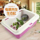 烏龜缸植物盆 開放式烏龜盒 水龜半水龜龜苗飼養盒 塑料龜盆 MKS卡洛琳