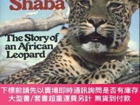 二手書博民逛書店Queen罕見of Shaba : The Story of an African Leopard-沙巴女王:非洲