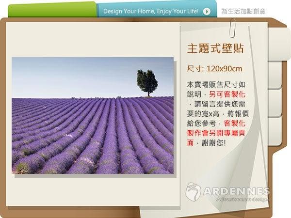 【ARDENNES】防水壁貼 壁紙 牆貼 / 霧面 亮面 / 草原花卉系列 NO.F103