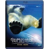 Blu-ray 我們的地球BD