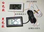 (一件免運)溫度計電子溫度計數顯數字水溫計魚缸冰箱水族龜嬰兒測溫儀黑色 白色