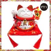 農曆新年春節-開運陶瓷7吋風生水起寶扇八方招財貓/撲滿存錢桶擺飾(含坐