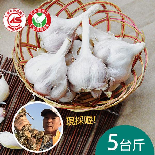 雲林有機新鮮大蒜(乾蒜)5台斤含運組