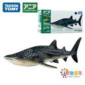 TOMY多美安利亞仿真野生海洋動物模型 鯨鯊魚 811275兒童男孩玩具