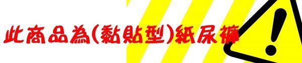 【包大人】防漏護膚(M)20片x6包/箱購/免運/包大人