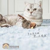 智慧仿真電動貓最愛逗貓發聲炫律獵物鳥玩具