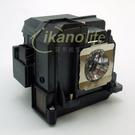 EPSON-原廠原封包廠投影機燈泡ELPLP71/ 適用機型EB-1410WT、EB-485WT、EB-485W、