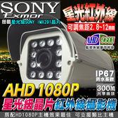 【台灣安防】AHD 1080P SONY星光級晶片 戶外防護罩攝影機 12顆陣列燈 監視器 DVR IP67 高清類比