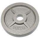 奧林匹克鑄鐵槓片10KG(二入)/重量片/烤漆槓片/重量訓練/