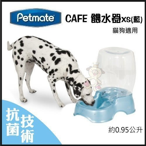 *WANG*PetmateCAFE餵水器XS(藍) 約0.95公升【DK-24437】
