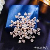 胸針  歐美超大夸張個性胸針女胸花配飾氣質仿珍珠韓國奢華大氣 傾城小鋪