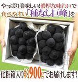 【果之蔬-全省免運】日本長野無籽無籽巨峰葡萄(每盒900g±10%/單串或2串入)