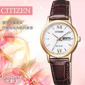 【公司貨保固】CITIZEN EW3252-07A 光動能 27mm 藍寶石玻璃女錶