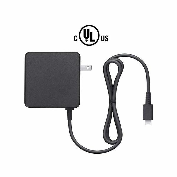 Amazon Basics Type-C-AC雙電壓充電器 6尺 適用Nintendo Switch/ Switch Lite [2美國直購]