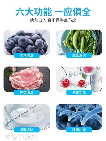果蔬臭氧機 榮仕福洗菜機家用全自動果蔬清洗臭氧解毒消去農殘肉類食材凈化機  220V 亞斯藍