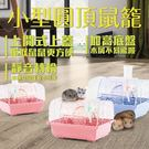 小圓弧頂鼠籠NO.737(附食皿,飲水器,滾輪)-優惠價-台灣製造 品質肯定