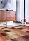 范登伯格 巴菲特★現代時尚地毯-橘褐15...