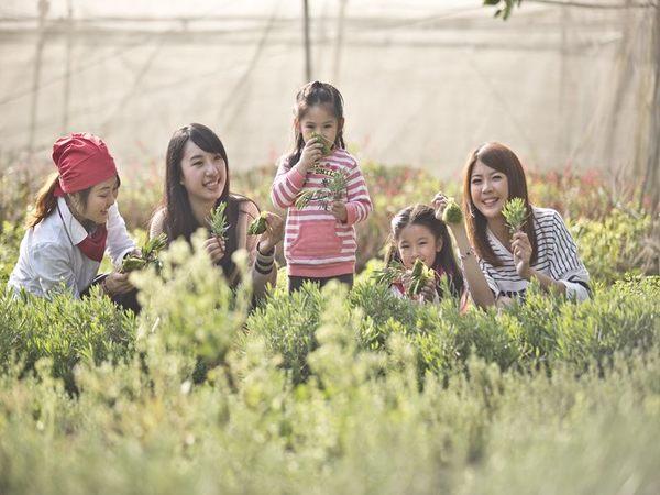 田園美食兌換券★超過30家農場推出40條以上遊程任您選★
