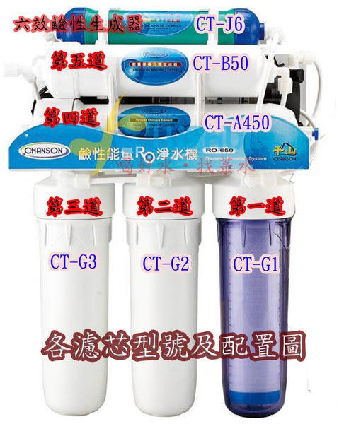 千山淨水Chanson原廠公司貨進口粉狀後置活性碳濾心CT-B5/CT-B50