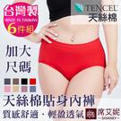 女性高腰三角褲 TENCEL纖維 天絲棉...