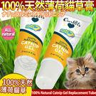 【 培菓平價寵物網】美國CosmicCatnip宇宙貓 》100%天然薄荷貓草膏