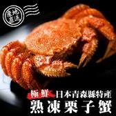 【海肉管家】日本熟凍栗子母蟹X1隻(100g-130g/隻)