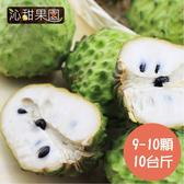 沁甜果園SSN.台東鳳梨釋迦(9-10顆裝,10台斤)﹍愛食網
