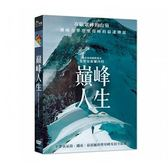 巔峰人生 DVD Kilian Jornet Path to Everest 免運 (購潮8)