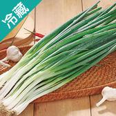 台灣青蔥2包(200g±5%/包)【愛買冷藏】