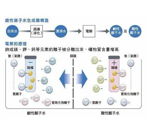 [天康] TC-S1450電解水機 + TC-888全戶式、全屋式除 [氯] 淨水系統