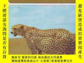 二手書博民逛書店外文畫冊罕見【THE CHILDRENS TREASURY OF