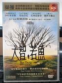 挖寶二手片-P01-415-正版DVD-電影【大智若魚】-提姆波頓 伊旺麥奎格(直購價)