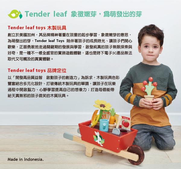 【美國Tender Leaf Toys】浪漫庭園積木組(附34塊積木拼圖)