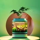 小米畫法幾何迷你懶人魚缸兩棲生態鏈客廳辦公室燈光小型水族箱 小山好物