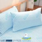 ‧日本進口i cold冰凍紗  ‧體感降溫6度c  ‧可直接機洗 ‧高密度‧高品質‧最涼快 不含床包