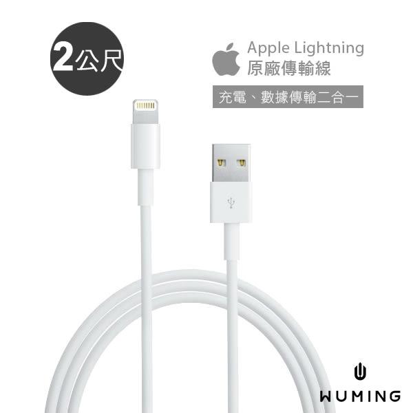 2公尺 蘋果 原廠 傳輸線 充電線 Apple iPhone XR XS Max iX i8 Plus i7 iPad Pro mini Air 2 3 4 『無名』 M03111