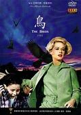 【停看聽音響唱片】【DVD】鳥