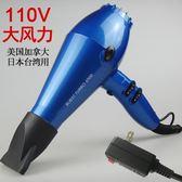 吹風機 110v伏吹風機出國用日本美國加拿大臺灣用風筒大功率負離子電吹風 生活主義