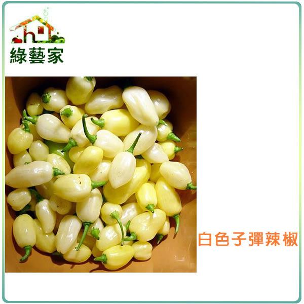 【綠藝家】大包裝G93.白色子彈辣椒種子80顆