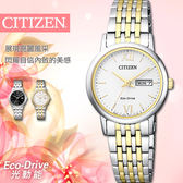 【公司貨5年延長保固】CITIZEN 星辰表 Eco-Drive 光動能 27mm 防水 女錶 EW3254-87A