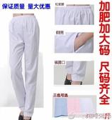 護士褲白色男女醫生工作急診服冬夏裝褲子鬆緊腰加肥加大碼 200斤『橙子精品』