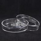 玻璃培養皿7.5cm  細菌培養皿 玻璃皿 玻璃罩 實驗器材