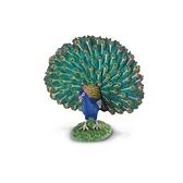 【永曄】collectA 柯雷塔A-英國高擬真動物模型-飛禽動物系列-孔雀