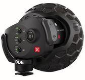 ◎相機專家◎ 享好禮 RODE Stereo VideoMic X 專業立體聲麥克風 幻象電源 廣播級 公司貨