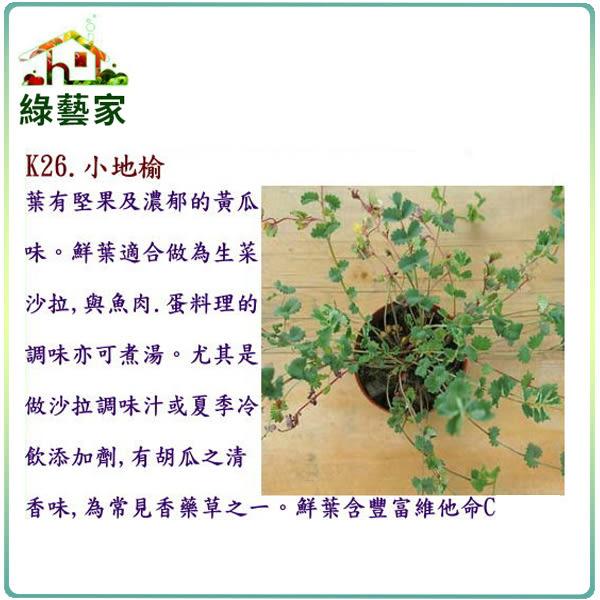 【綠藝家】大包裝K26.小地榆種子1000顆